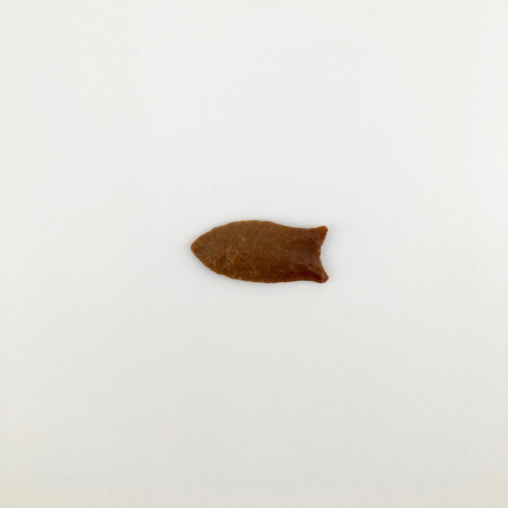 This Clovis point is the oldest artifact in the Archaeology collection.
