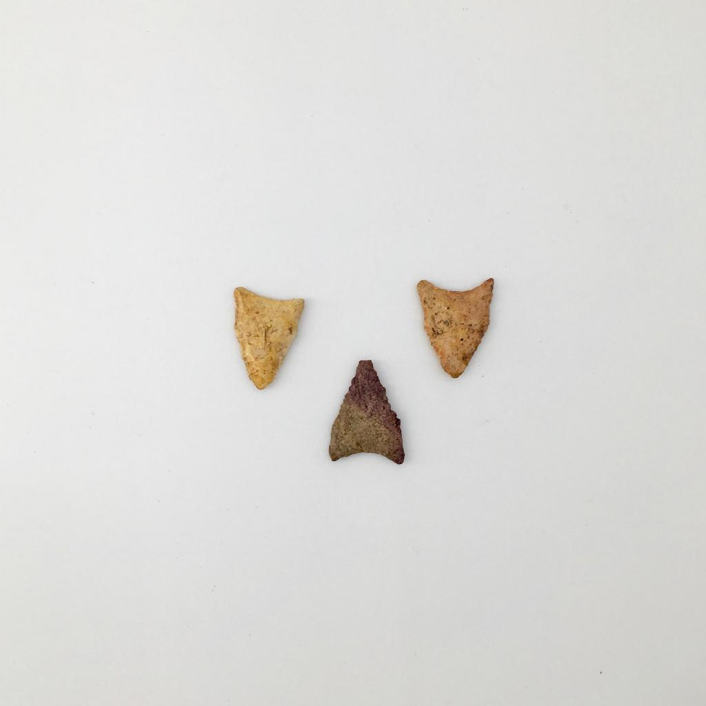 Dalton points from the PaleoIndian period date back to 8500-7900 BC. Dalton points have in-curved bases and are some of the earliest in Georgia. The middle point was fire-treated to improve flaking characteristics, causing it to have a reddish hue.